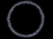 College Life Study_Logo_basic_transparen