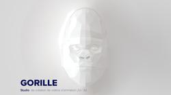 Gorille-3