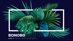 Bonobo Studio