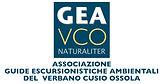 Logo_GEA-piccolo-b.JPG