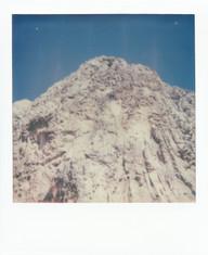 Polaroid  26 copy.JPG