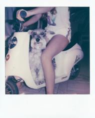 Polaroid  174 copy.JPG