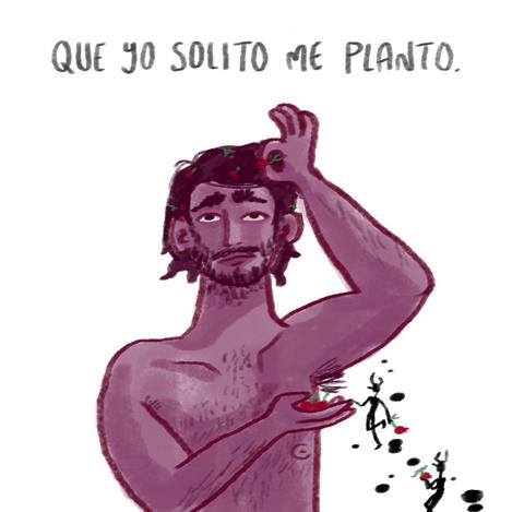 semillas2.png