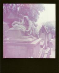 Polaroid  64 copy.JPG