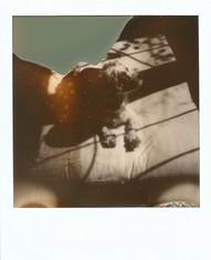 Polaroid  82 copy.JPG