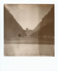 Polaroid  70 copy.JPG