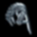 aldabra_znak_metalic.png