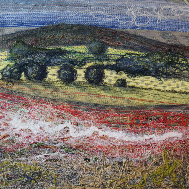 Poppy View, Terrington