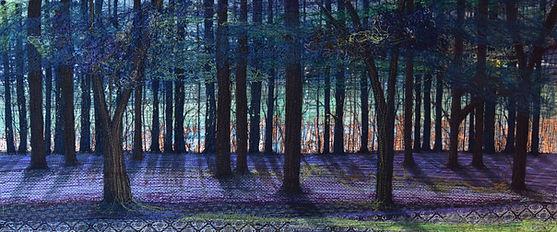Bluebell Woods, Alne.jpg