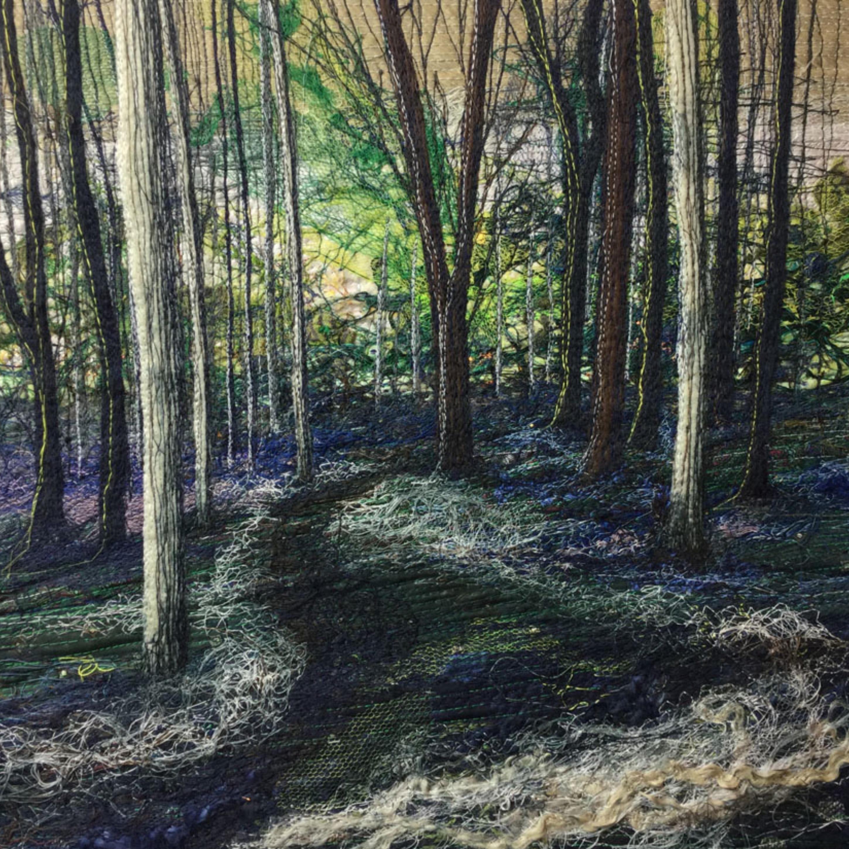 Stittenham Woods, Bluebells and Wild Garlic