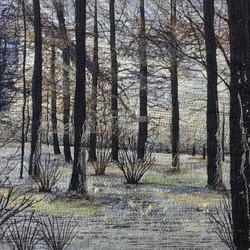 Beautiful Silence, Yorkshire Arboretum