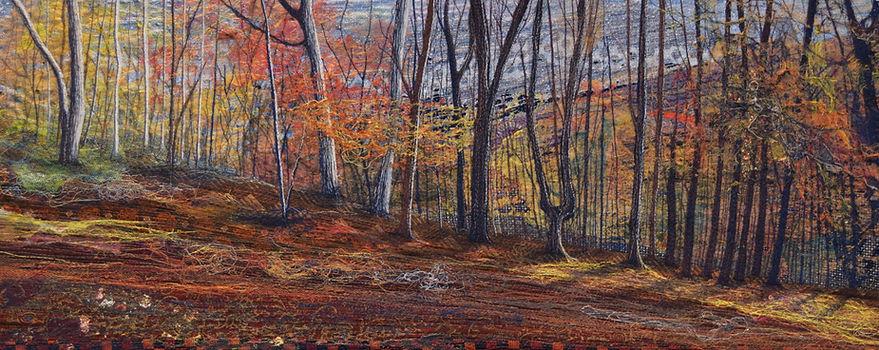 Autumn%20trees%20in%20Millington%20Woods