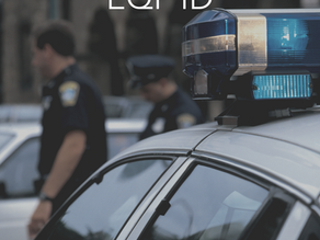 Assessing Police Department Systems and Cultures