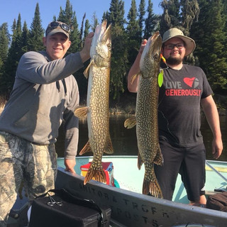 Double Northern