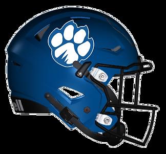 Helmet%20v1_edited.png