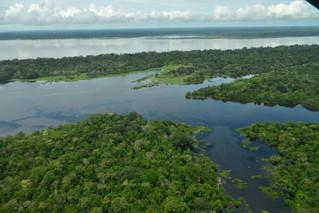 Revelan mapa que enciende alarmas sobre el daño ambiental en el país