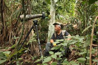Turistas chinos buscan rara ave colombiana.🐦