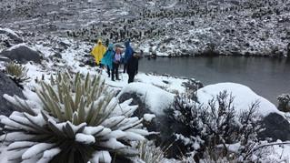 Vídeo: Luego de 20 años volvió a nevar en la Sierra Nevada de El Cocuy