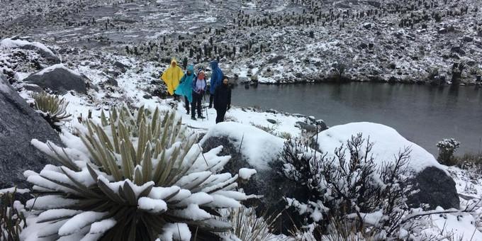 https://www.minuto30.com/video-luego-20-anos-volvio-a-nevar-en-la-sierra-nevada-de-el-cocuy/671035/