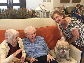 Seniors, Pets, Emily.jpg