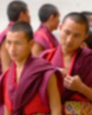 The Buddhist Circuit Nepal India 14 Days