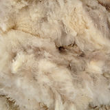 Wool for home page.jpg