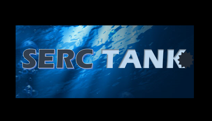 Serc Tank Business Competition by EduSerc