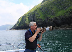 AyKat Sea Bird Safaris