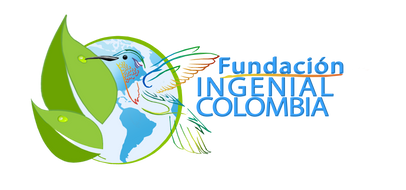 Grupo empresarial ingenial colombia Ingenial colmbia
