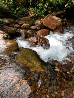 CAMINATA  FUNDACION INGENIAL COLOMBIA (1