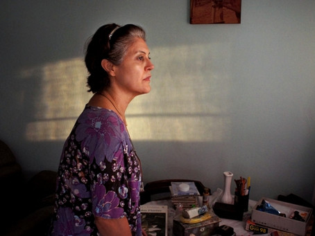 Curadores debatem com público filmes do Festival de Cinema da Bienal de Curitiba