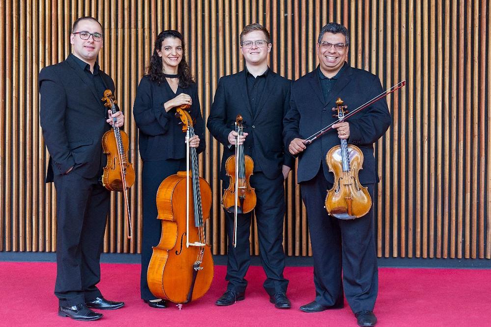 Orquestra Sinfônica Musica de Câmara