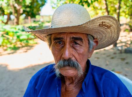 No livro Pantanal, João Farkas revela corpo e alma da região