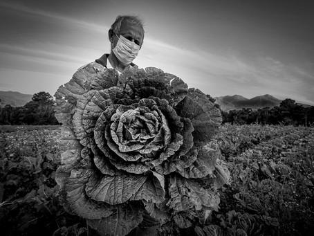 Curitiba abre a exposição itinerante do 14º Prêmio New Holland de Fotojornalismo
