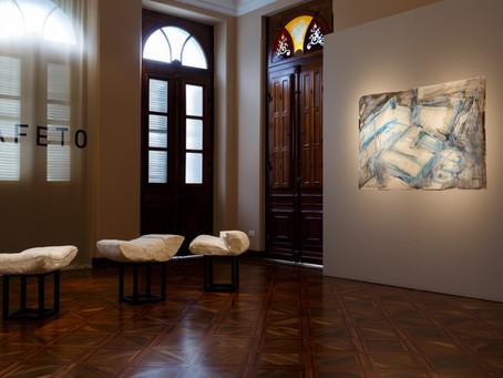 Exposição virtual de Teca Sandrini segue no Palacete dos Leões