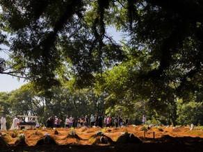 300 mil mortes por Covid-19 no Brasil: país atinge marca após ano de táticas fracassadas