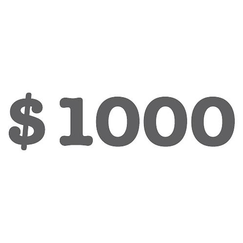 $1,000 Donation