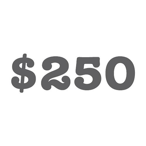$250 Donation