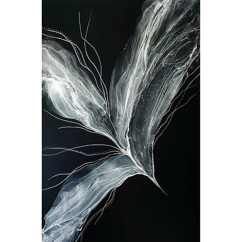 Silver on black - magic seed