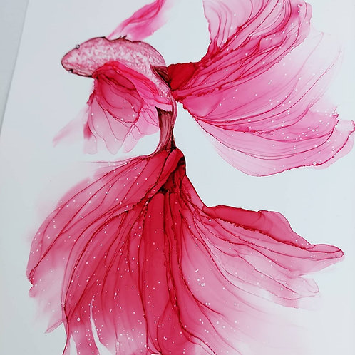 Pink fish
