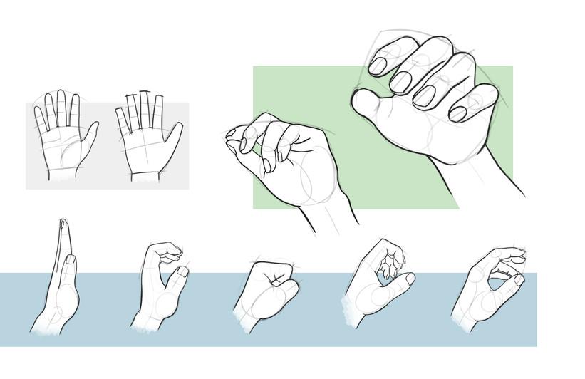 STUDY of HANDS.jpg