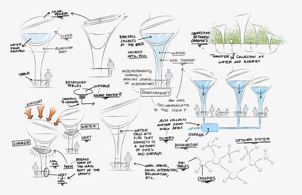 disney process canopySMALL.jpg