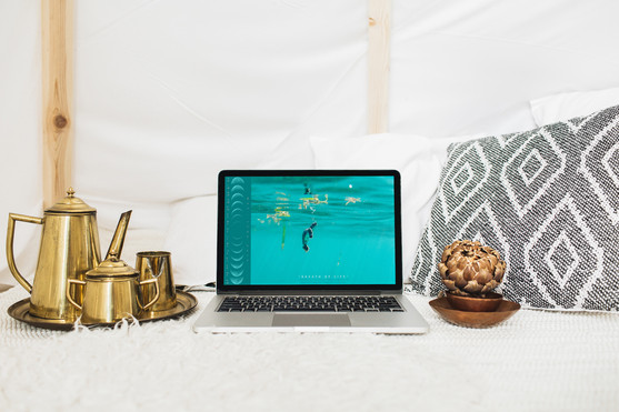 Calendar_Laptop_Bronze_©_Denesa_Chan_05-