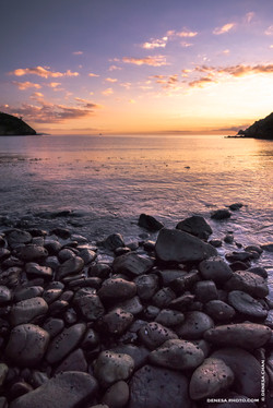 Denesa Chan Photographer Rocky Beach Bay Sunset Purple Orange Geat Barrier Island Copyright Denesa C