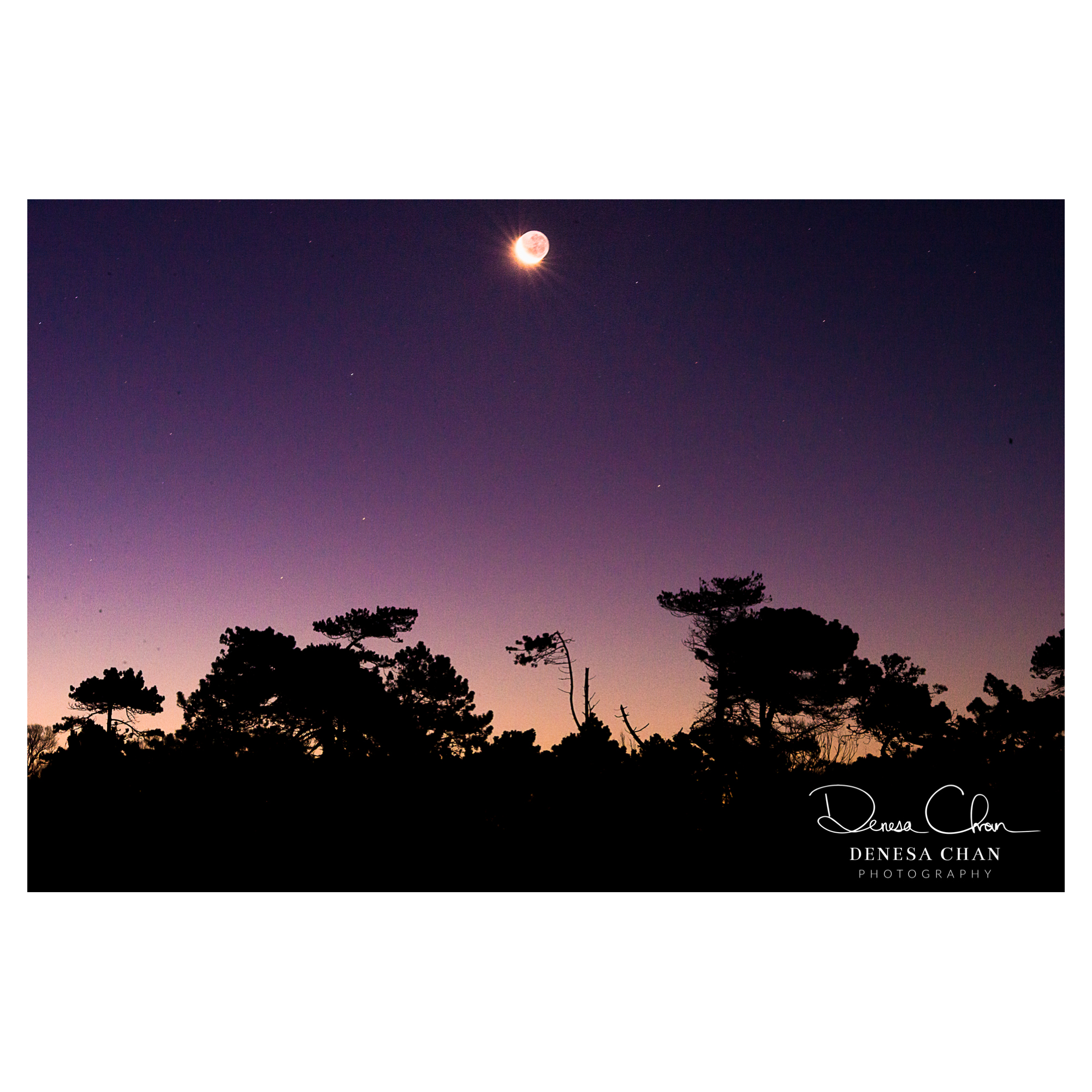 Wakanui_Beach_Sunset_New_Zealand_Moon_©_Denesa_Chan_Photography_2450