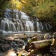 Parakaunui_Falls_Catlins_South_Island_Ne