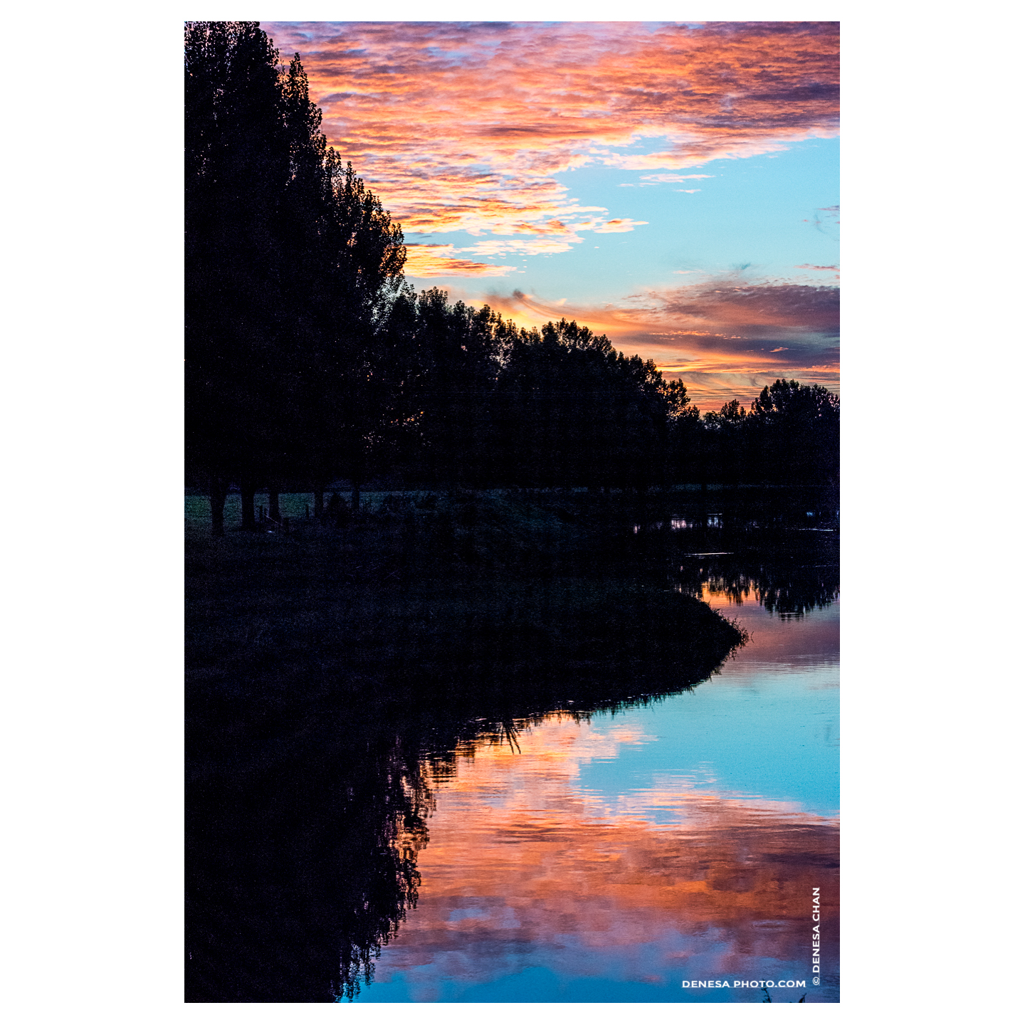 New_Zealand_Sunset_Reflection_Vivid_Colors_Paeroa_River_©_Denesa_Chan_Photographer_Nature_Photograph