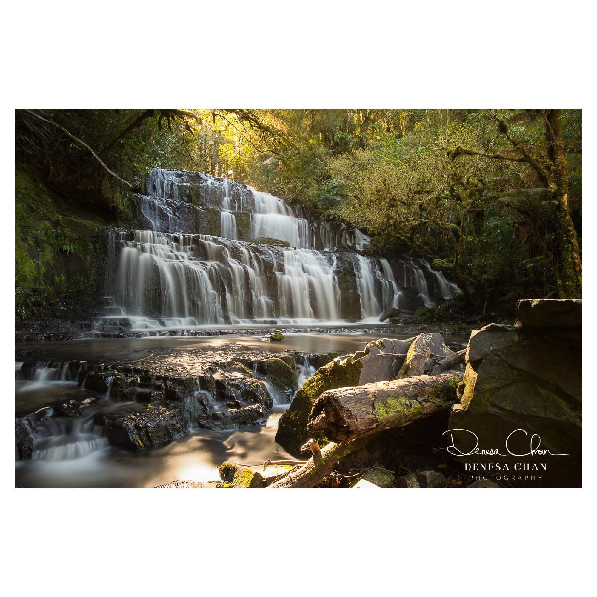 Parakaunui_Falls_Catlins_South_Island_New_Zealand_©_Denesa_Chan_Photography_0311