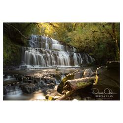 Parakaunui_Falls_Catlins_South_Island_New_Zealand_©_Denesa_Chan_Photography_0311