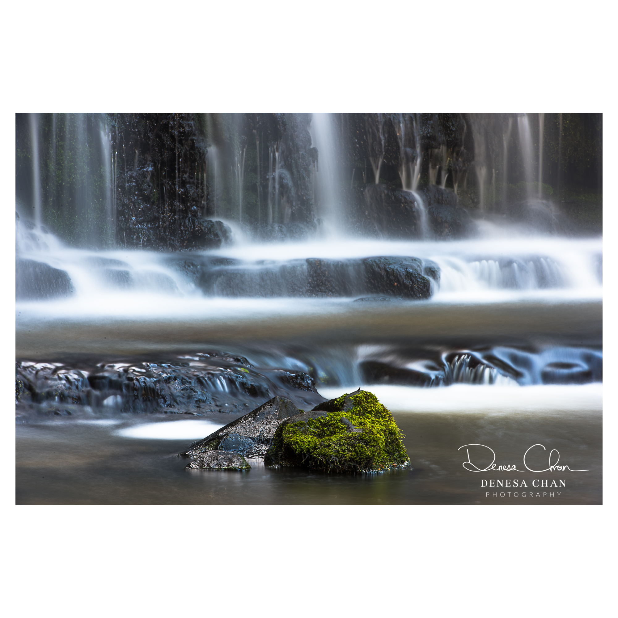 Parakaunui_Falls_Catlins_South_Island_New_Zealand_©_Denesa_Chan_Photography_2828